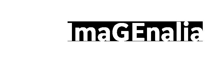 ImaGEnalia 2021 - Warsztaty Tomografii Komputerowej i Rezonansu Magnetycznego